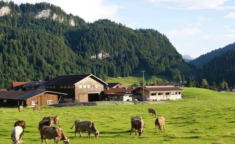 Alpen Echo Ferienwohnungen Auf Dem Bauernhof Oberallg 228 U